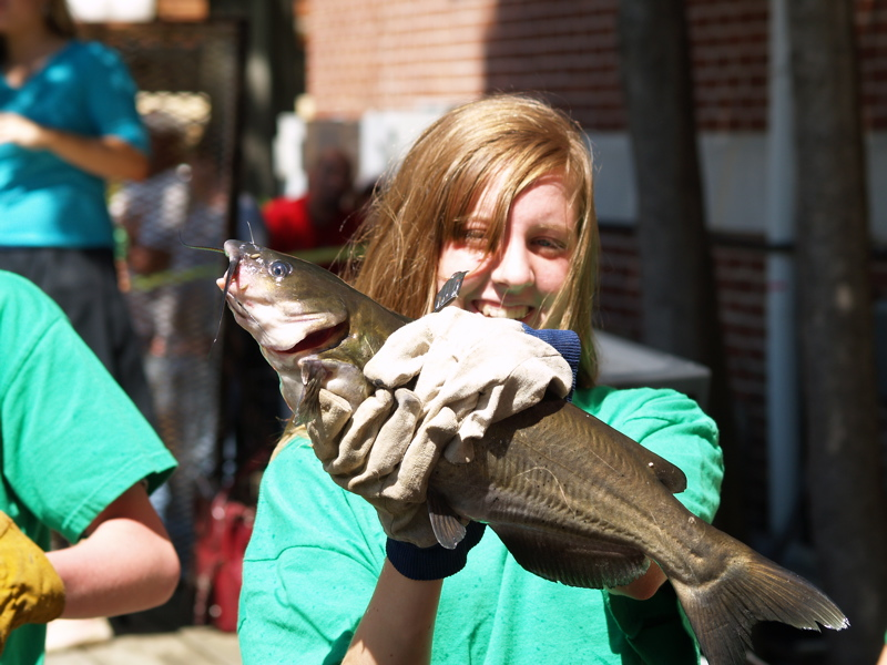 Discover paris tn catfish races discover paris tennessee this is one sure winner publicscrutiny Choice Image