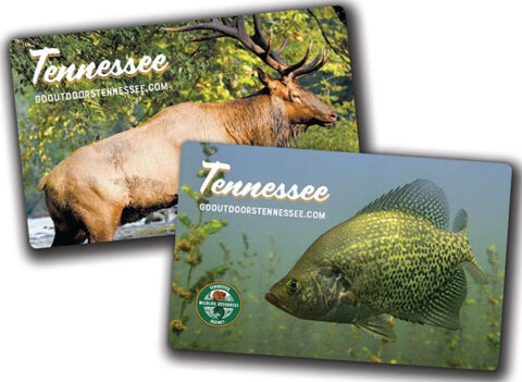 2021-22 Tennessee Hunting and Fishing Licenses
