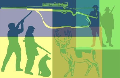 TWRA 2021 Free Youth Deer Hunt Registration Underway